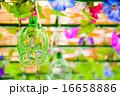 江戸風鈴 16658886