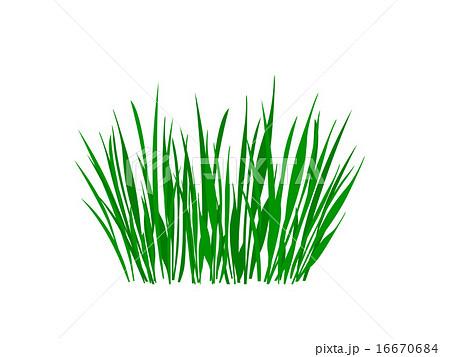草のイラストのイラスト素材 16670684 Pixta