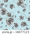 Vintage monochrome watercolor seamless pattern with wildflowers, poppies daisies cornflowers 16677123