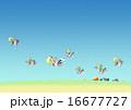 鴨 渡り鳥 鳥のイラスト 16677727