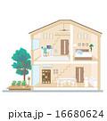 一軒家 断面図 ベクターのイラスト 16680624