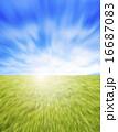環境イメージ 16687083