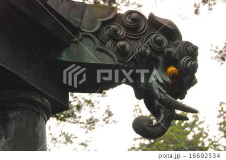 阿蘭陀灯籠の「銅製のバク」(日光東照宮/栃木県日光市山内) 16692534