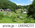 長野県の集落と棚田:大町市八坂地区押の田集落 16698255