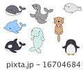 海の生き物 16704684