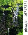 スッカン沢 滝 渓谷の写真 16717274