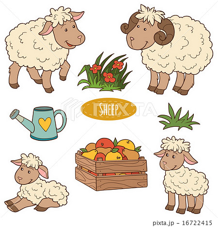 Set of cute farm animals and objects, family sheep 16722415