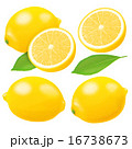レモン 16738673