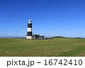 青空と緑の能取岬灯台 16742410