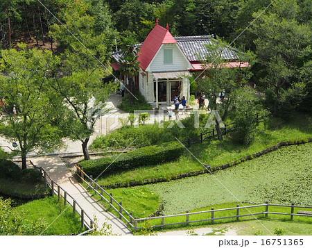 サツキとメイの家 16751365