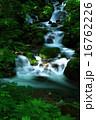 夏の滝 16762226