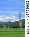 高圧送電線・鉄塔 16779992