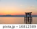 琵琶湖の夜明け 16812389