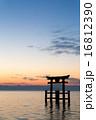 琵琶湖の夜明け 16812390