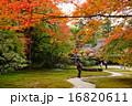 奈良名園吉城園・紅葉の最盛期 16820611