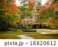 奈良の名園吉城園・紅葉の最盛期(人物版外国人は別途販売中) 16820612