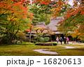 外国人観光客に人気の奈良の名園・吉城園の紅葉 16820613