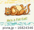 Fat cat 16824346