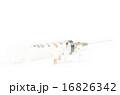 医療器具 医療 注射器の写真 16826342
