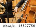 手元 弦楽器 演奏の写真 16827750