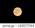 ブルームーン 月 満月の写真 16837594