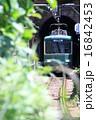 江ノ電の電車 16842453