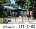 江ノ電極楽寺駅 16842468