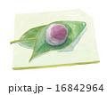 生菓子 水饅頭 葛饅頭のイラスト 16842964