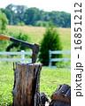 斧 薪割り 丸太の写真 16851212