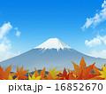 紅葉と富士 16852670