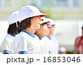 運動会で応援する女の子(体操服、赤白帽子) 16853046