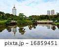 県立幕張海浜公園 見浜園(9月)千葉県千葉市美浜区 16859451