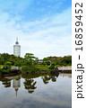 県立幕張海浜公園 見浜園(9月)千葉県千葉市美浜区 16859452