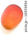 おいしい完熟マンゴー 16859894