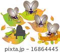 昆虫の演奏会 16864445