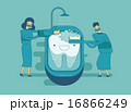 歯 歯医者 歯科医のイラスト 16866249