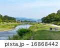 賀茂川 河川 川の写真 16868442