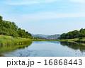 賀茂川 河川 川の写真 16868443