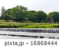 賀茂川 河川 川の写真 16868444