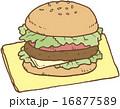 ハンバーガー 16877589