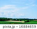 丘陵風景 青空 雲の写真 16884659