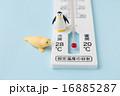 エアコン設定温度イメージ 16885287