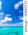 珊瑚礁 青空と海 16885535