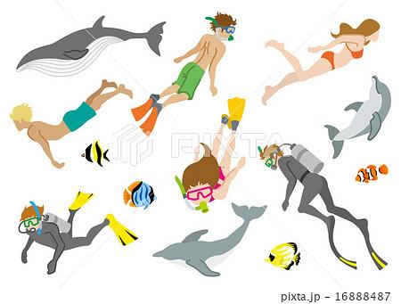 泳ぐ人物と海洋生物 セットのイラスト素材 16888487 Pixta