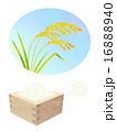 稲穂と米 16888940
