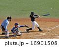 野球少年ナイスバッティング 16901508