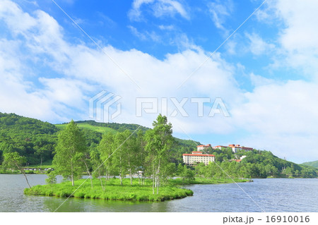 夏の高原風景 森林と青空 長野県白樺湖 の写真素材 16910016 Pixta