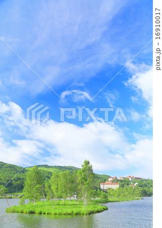 夏の高原風景 森林と青空 長野県白樺湖 の写真素材 16910017 Pixta