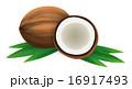 ココナッツ 16917493