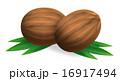coconuts 16917494